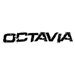 In the category Skoda Octavia you...