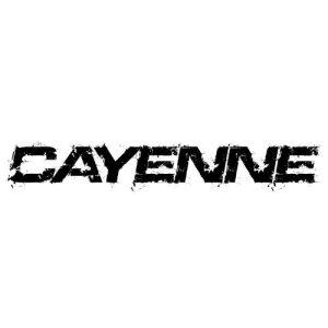 In der Kategorie Porsche Cayenne...