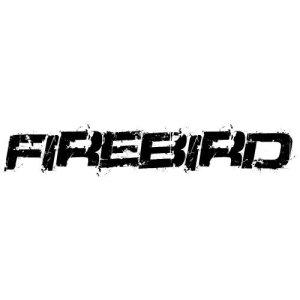In the category Pontiac Firebird you...