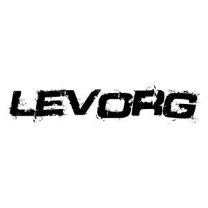 In the category Subaru Levorg you...