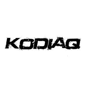 In der Kategorie Skoda Kodiaq finden...