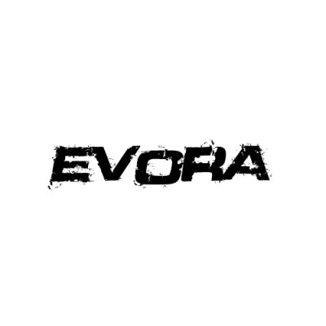 In der Kategorie Lotus Evora finden...