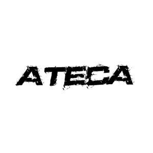 In der Kategorie Seat Ateca  finden...